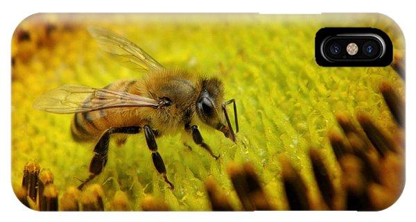 Honeybee iPhone X Case - Honeybee On Sunflower by Chris Berry