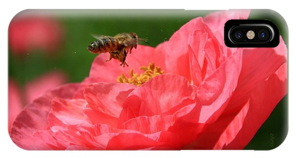 Honeybee iPhone X Case - Honeybee Pollinating A Poppy by Chris Berry