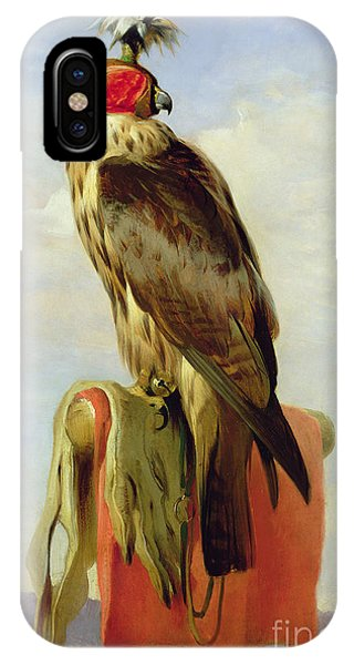 Hooded Falcon IPhone Case
