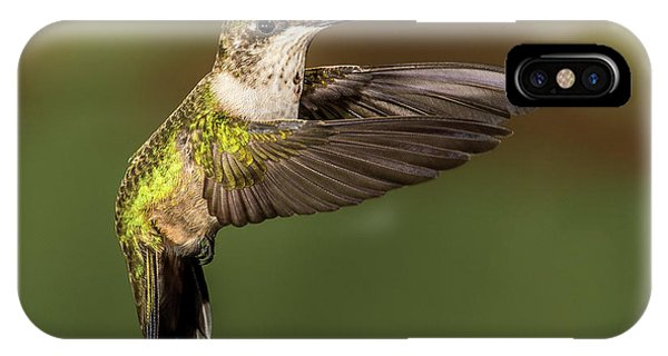 Humming Bird iPhone Case - Hoovering Hummer by Paul Freidlund