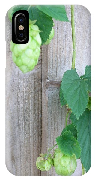 Hops On Fence IPhone Case
