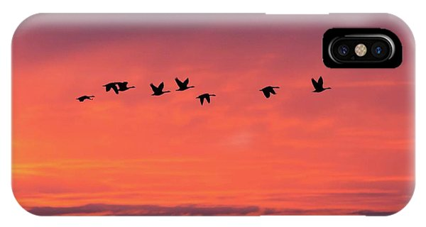 IPhone Case featuring the photograph Horicon Marsh Geese by Paul Schultz