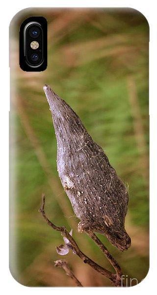 Horicon Marsh iPhone Case - Horicon Marsh - Milkweed by Mary Machare