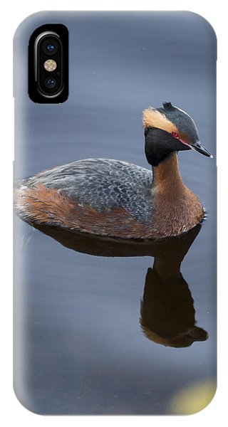 Horned Grebe IPhone Case
