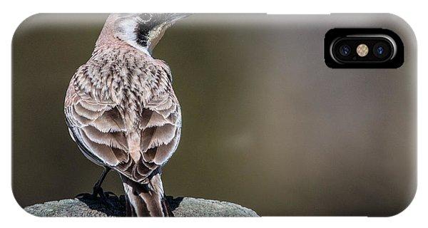 Horned Lark IPhone Case