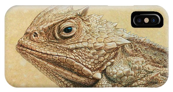 Frogs iPhone Case - Horned Toad by James W Johnson