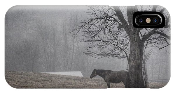 Horse And Tree IPhone Case