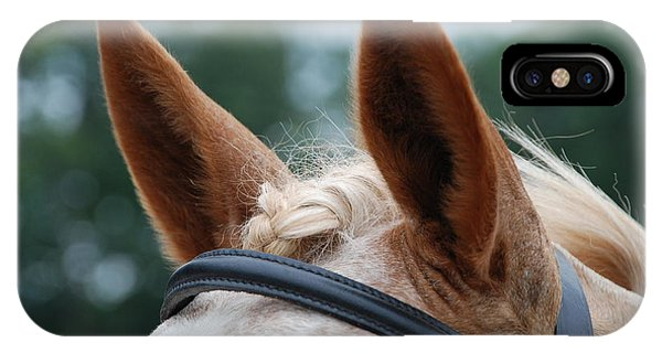 Horse At Attention IPhone Case