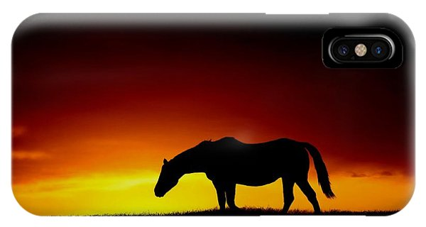 Horse At Sunset IPhone Case