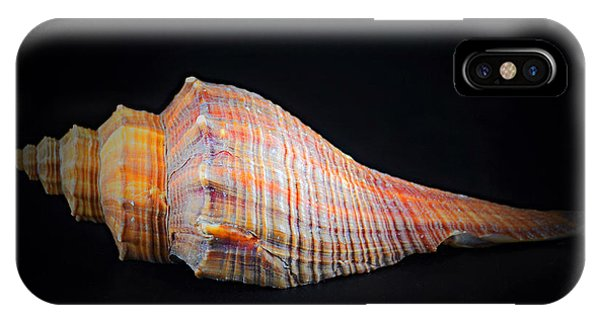 Horse Conch IPhone Case
