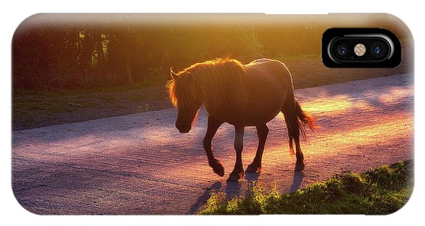 Horse iPhone Case - Horse Crossing The Road At Sunset by Mikel Martinez de Osaba