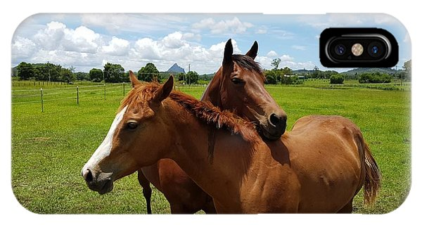 Horse Cuddles IPhone Case