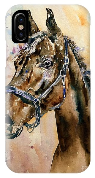 Fauvism iPhone Case - Horse Head by Suzann Sines
