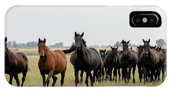Horse Herd On The Hungarian Puszta IPhone Case