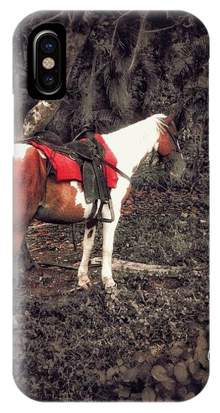Horse In Red IPhone Case