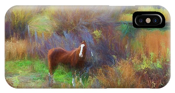 Horse Of Many Colors IPhone Case