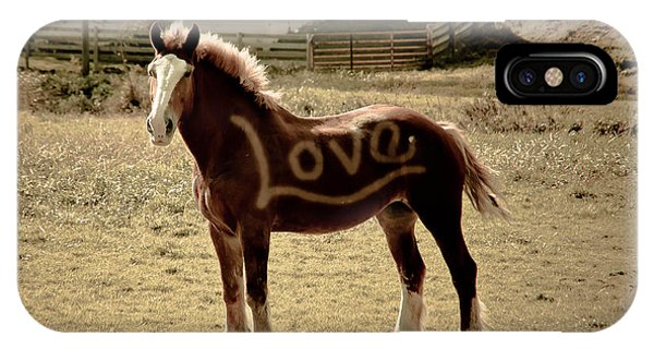 Horse Love IPhone Case
