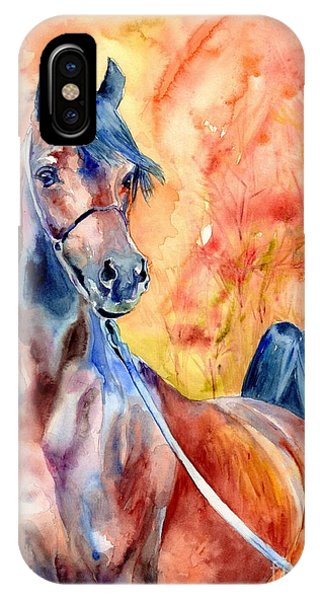 Fauvism iPhone Case - Horse On The Orange Background by Suzann Sines