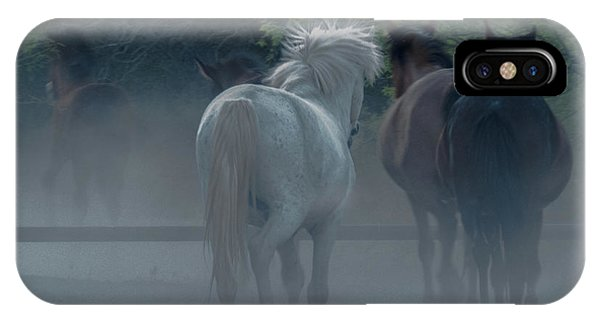 Horse 8 IPhone Case