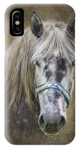 Equine iPhone Case - Horse Portrait I by Tom Mc Nemar