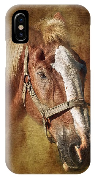 Tan iPhone Case - Horse Portrait II by Tom Mc Nemar