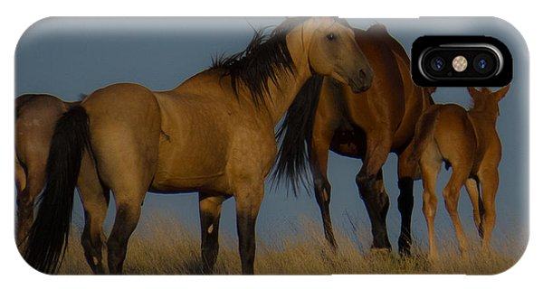Horses 1 IPhone Case