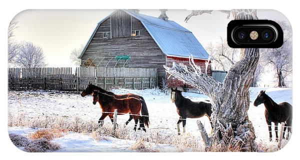 Horses And Barn IPhone Case