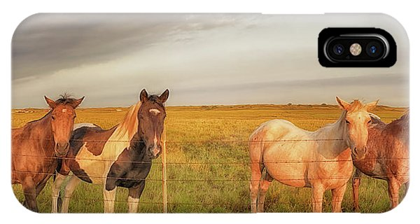Horses At Kalae IPhone Case