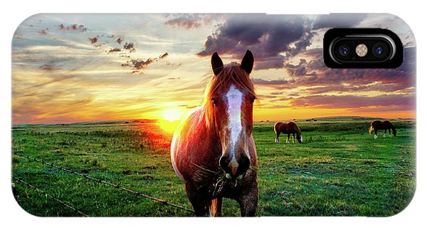 Horses At Sunset IPhone Case