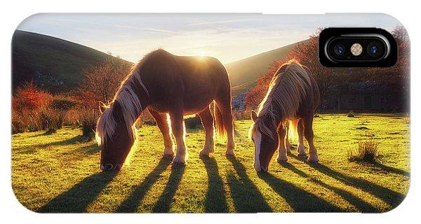 Horses In Austigarmin IPhone Case