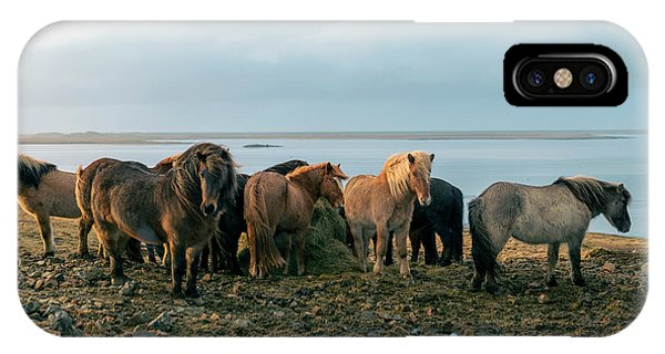 Horses In Iceland IPhone Case