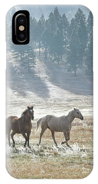 Horses In The Morning Light IPhone Case