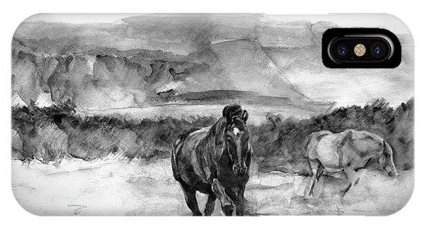 Horses Near Sybil Head West Kerry Ireland On The Wild Atlantic Way IPhone Case