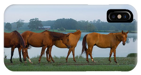 Horses On The Walk IPhone Case