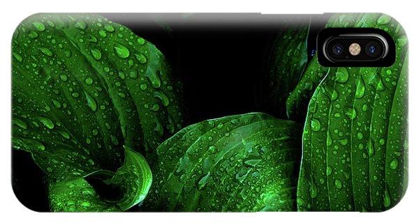 Hostas After The Rain I IPhone Case