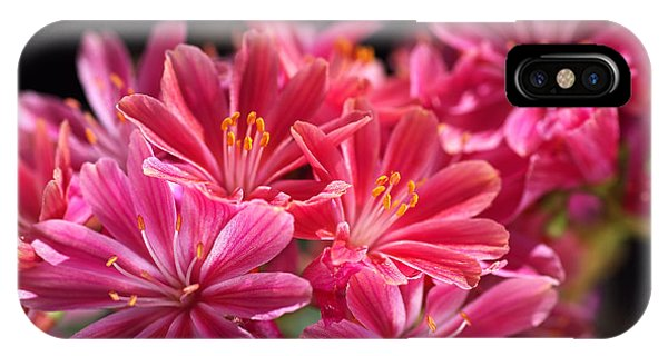 Hot Glowing Pink Delight Of Flowers IPhone Case