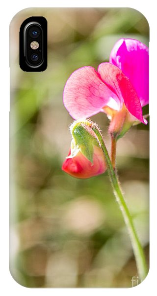Hot Pink 3367 IPhone Case