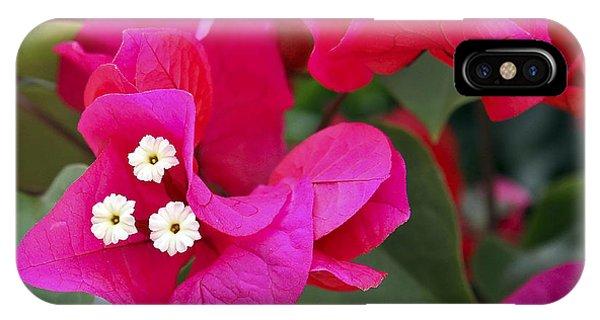 Hot Pink Bougainvillea IPhone Case