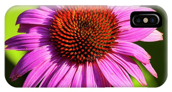 Hot Pink Flower IPhone Case