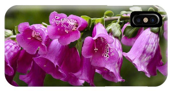 J Paul Getty iPhone Case - Hot Pink Foxglove by Teresa Mucha