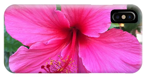 Hot Pink Hibiscus  IPhone Case