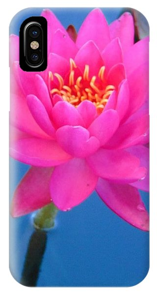 Hot Pink Water Lily IPhone Case