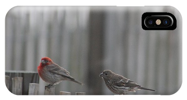 House Finches On The Fence IPhone Case