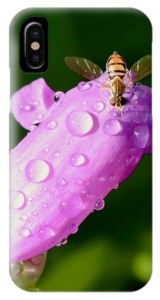 Hoverfly On Pink Flower IPhone Case