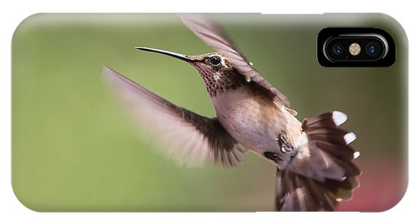 Hovering Hummer 2 IPhone Case