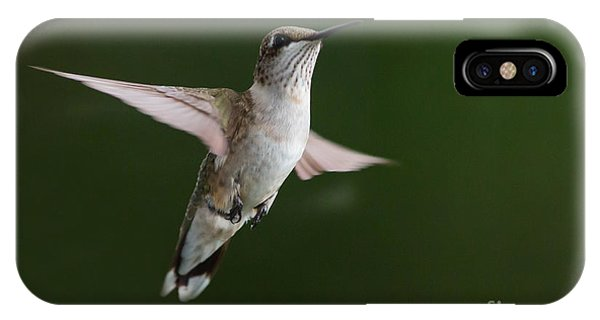 Hovering Hummer 3 IPhone Case