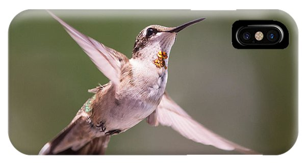Hovering Hummer 4 IPhone Case