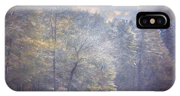 Howe State Park In Winter IPhone Case