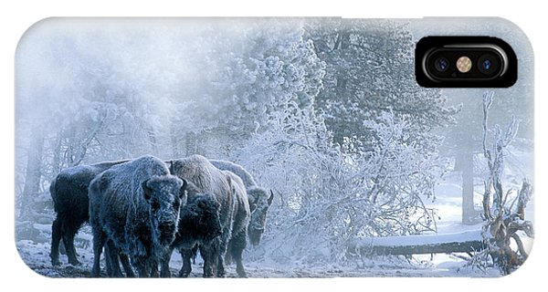 Yellowstone National Park iPhone Case - Huddled For Warmth by Sandra Bronstein