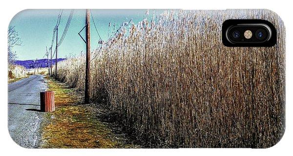 Hudson River Winter Walk IPhone Case